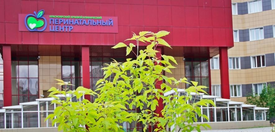 350 детей родилось за июль в Краевом центре охраны материнства и детства
